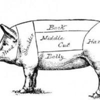 pig_diagram.jpg